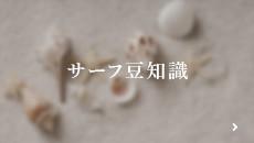 サーフ豆知識